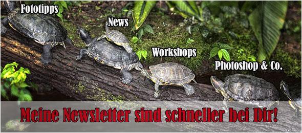 Newsletteranmeldung Fotoworkshop-Ingolstadt.de