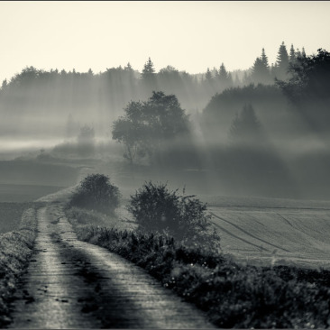 Altmuehltal Nebel Schwarzweiss-Fotografie