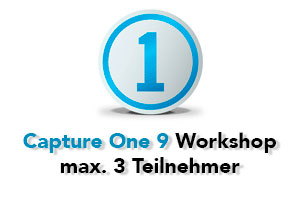 workshop capture one 9