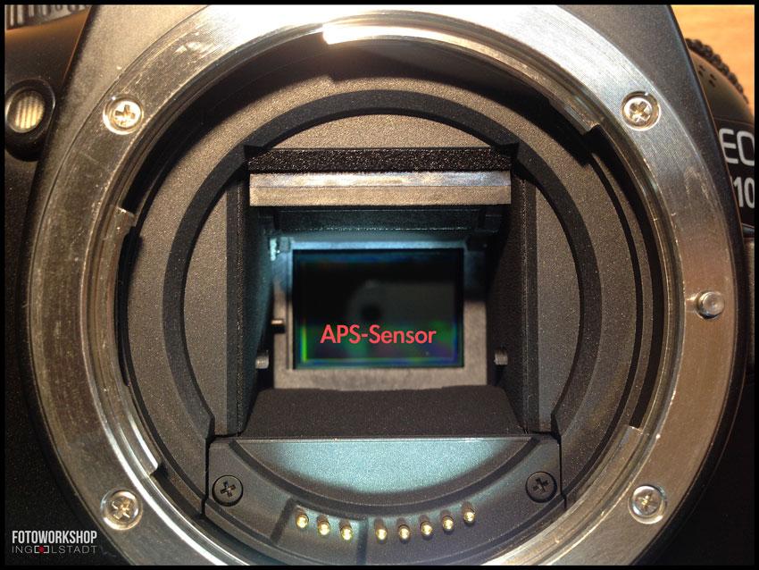 APS-Sensor-Canon-EOS-1100D
