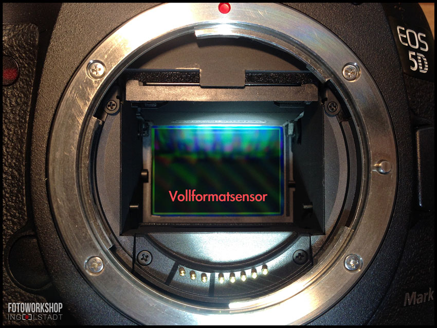 Vollformatsensor-canon-eos-5d-mark3