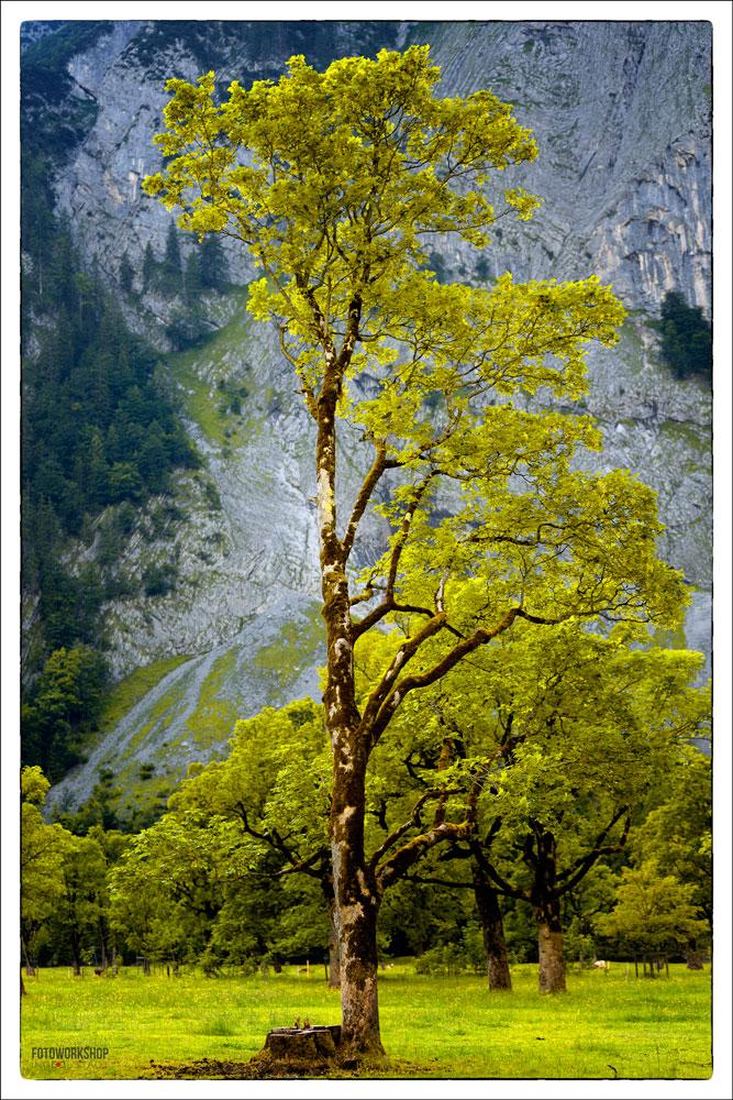 Ahornboden-landschaftsfotografie_3