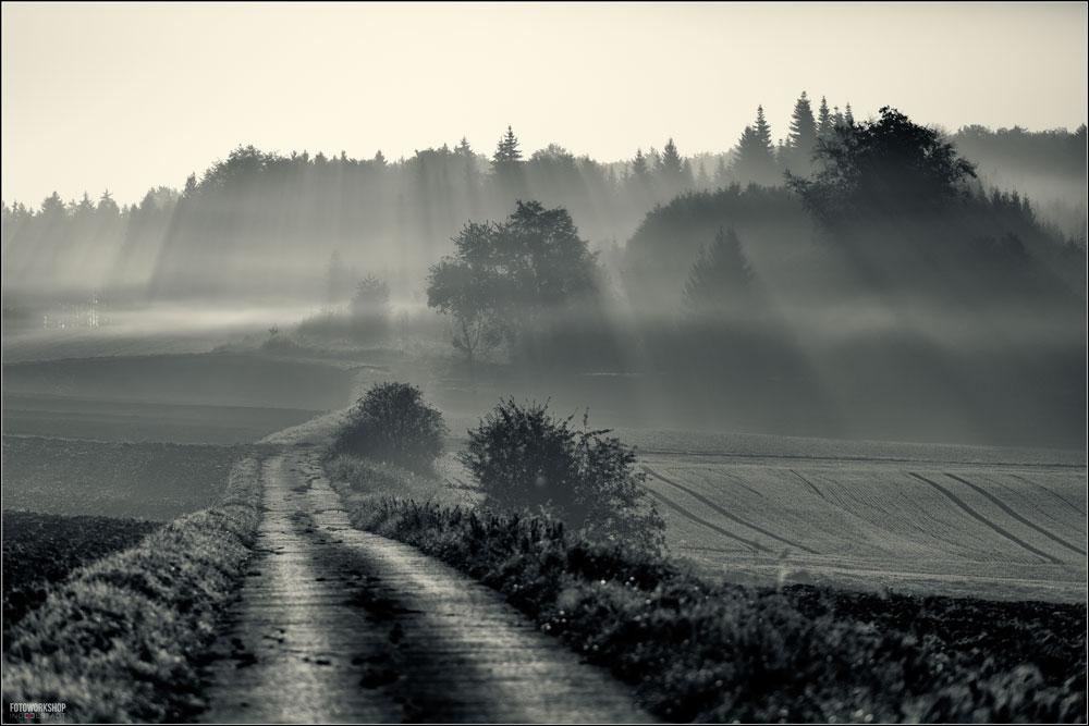 Morgennebel im Altmühltal