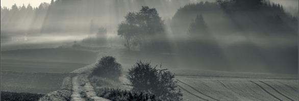 Altmuehltal Nebel Fotoworkshop Ingolstadt