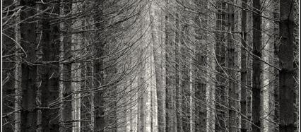 Landschaftsfotografie fotoworkshop-ingolstadt.de
