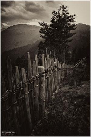 Workshop Schwarzweissfotografie