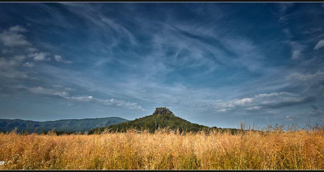 Feld Sachsen Zirkelstein