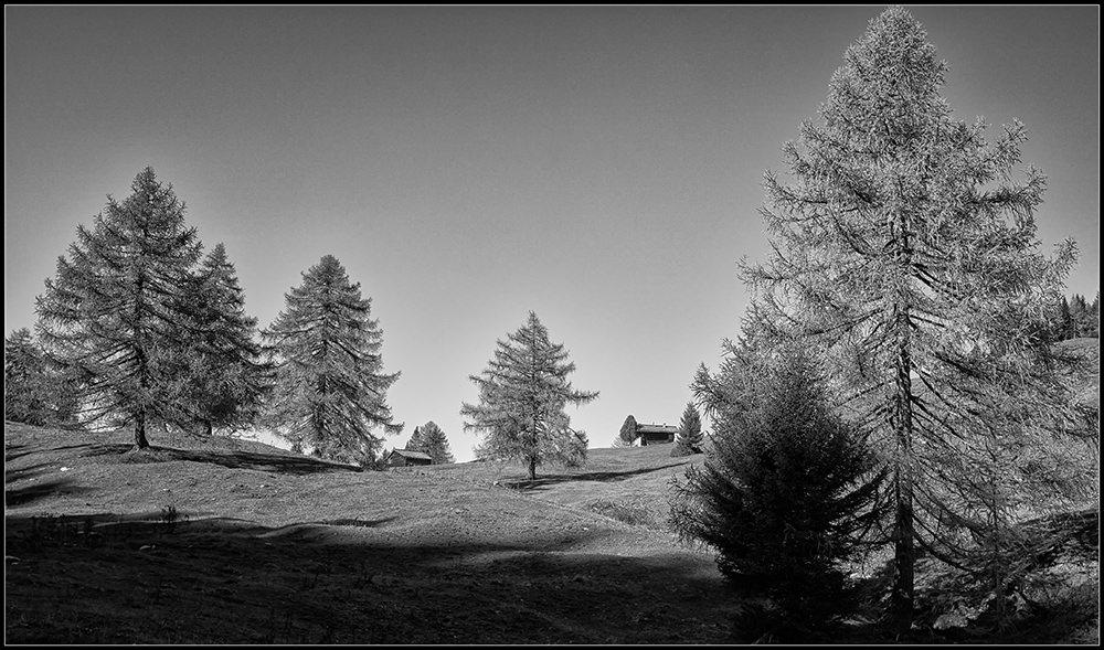 Lienzer Dolomieten Berghütte